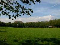 espace-vert-avenue-des-Fusilles