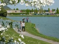 le-lac-au-printemps