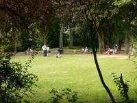 le-parc-public-rue-Elie-Gruyelle